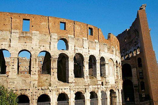 Colosseum. Rome. Italy : Stock Photo