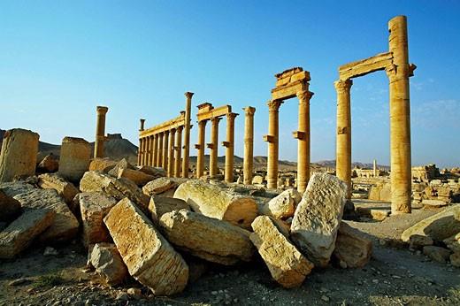 Stock Photo: 1566-508172 Ruins of the old Greco-roman city of Palmyra, Syria