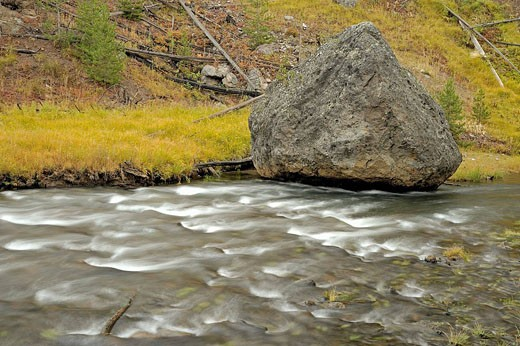 Rapids on Gibbon River with shoreline grasses in autumn : Stock Photo