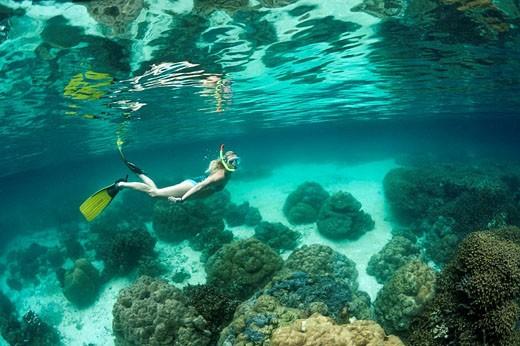 Stock Photo: 1566-514326 Snorkeling at Risong Bay, Risong Bay, Micronesia, Palau