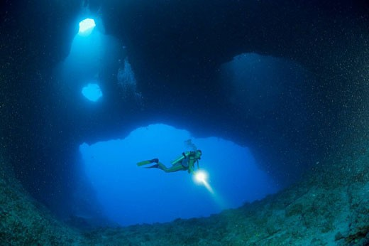 Diver in Blue Hole Cave, Micronesia, Palau : Stock Photo