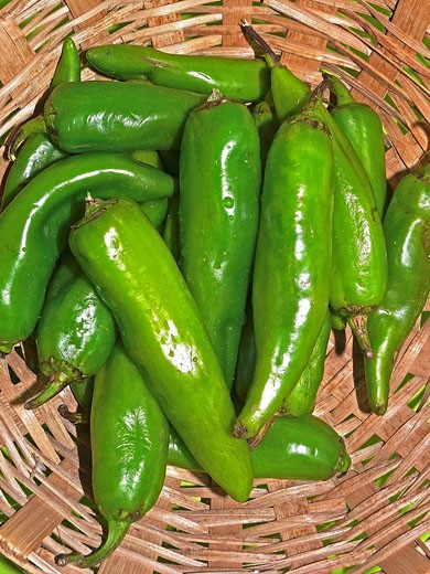 Green Chilies in a basket : Stock Photo