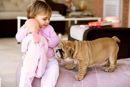 Little girl at home wiyh her puppy : Stock Photo