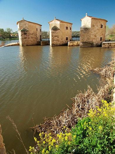 Aceñas de Olivares. Zamora. Castilla y León. España. : Stock Photo