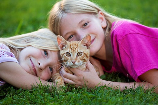 sisters with kitten : Stock Photo