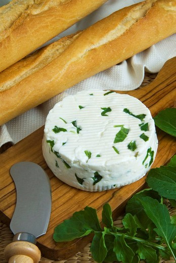 Stock Photo: 1566-535794 French cheese with arugola (roquette), french cuisine, france, europe,