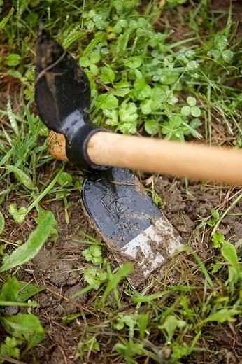 Farmer using hoe, hand tool, farming, kitchen garden, Guipuzcoa, Basque Country, Spain : Stock Photo