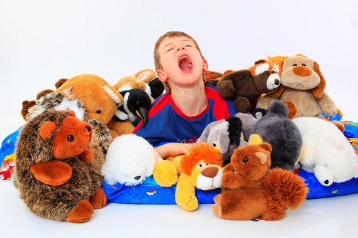 Stock Photo: 1566-541807 boy in bed with toy animals, studio, Oetwil am See, Zuerich, Switzerland