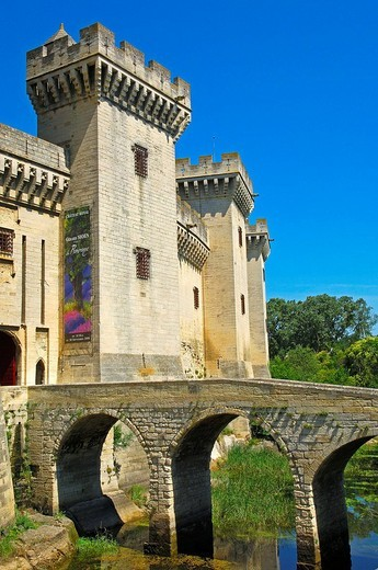 King René´s Castle, Tarascon. Bouches-du-Rhône, Provence-Alpes-Côte d´Azur, France : Stock Photo