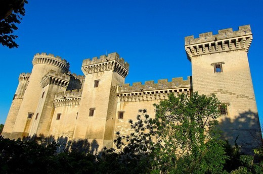 Stock Photo: 1566-542628 King René´s Castle, Tarascon. Bouches-du-Rhône, Provence-Alpes-Côte d´Azur, France