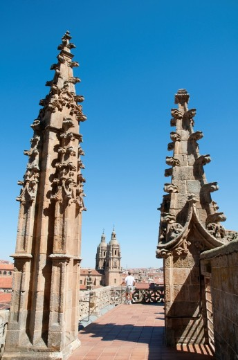 Terrace of the cathedral  Salamanca  Castile Leon  Spain : Stock Photo