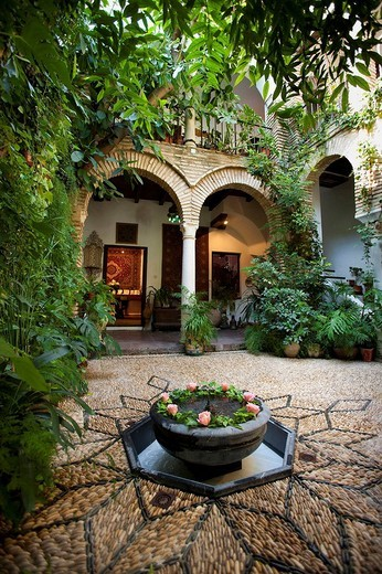 courtyard house Andalusi, Cordoba : Stock Photo