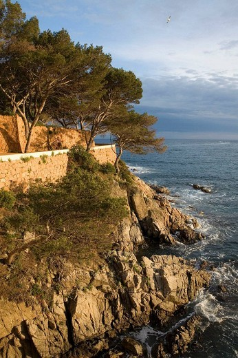 Spain. Cataluña. Girona. Costa Brava. S´Agaró, camí de ronda. : Stock Photo