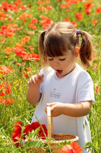 Little girl with poppies : Stock Photo