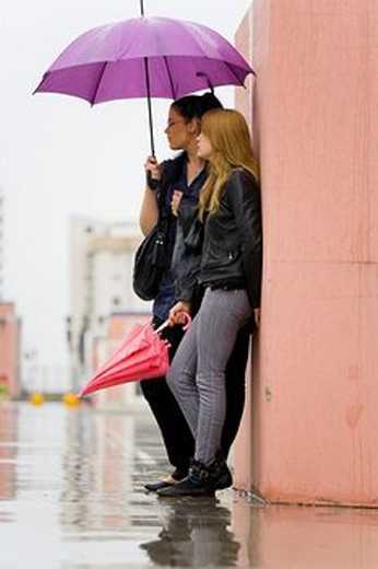Waiting together under one umbrella two girlfriends : Stock Photo