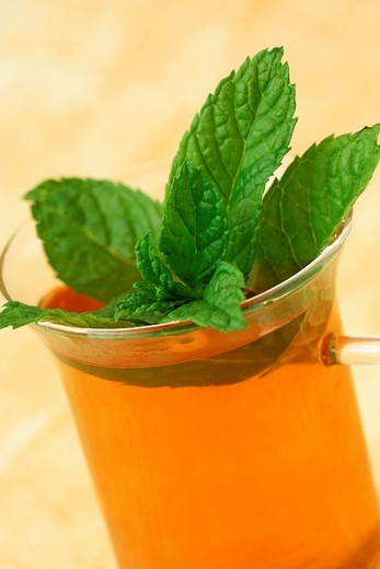 Stock Photo: 1566-567406 Tea with mint