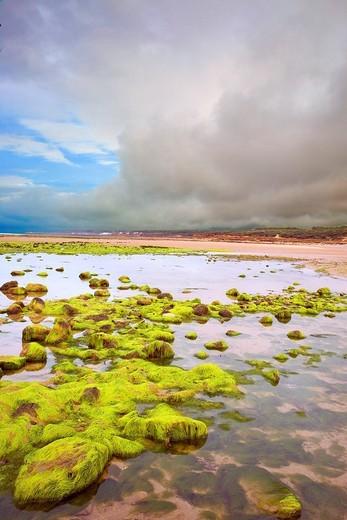 France, 85, Jard sur Mer: Beach Veillon : Stock Photo