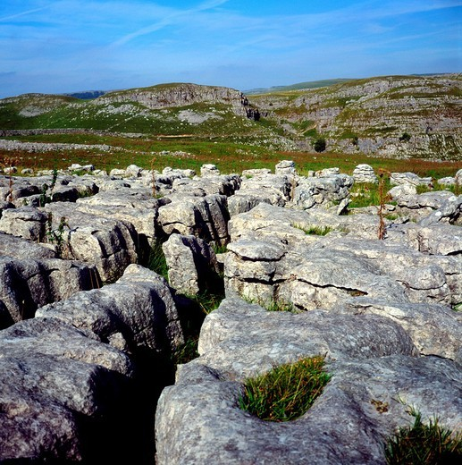 Limestone pavement, near Malham, limestone scenery, Yorkshire Dales national park, England : Stock Photo
