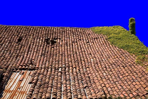 France, 85, Vendee: roof tiles : Stock Photo