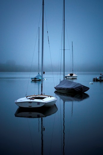 Sailboats on fog shrouded Lake Harriet at dawn : Stock Photo