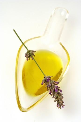 Lavender oil Lavandula officinalis : Stock Photo