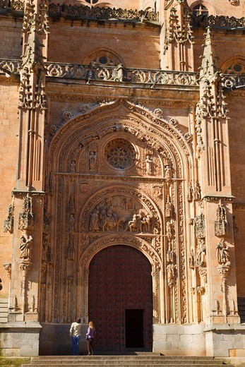 Stock Photo: 1566-578058 Salamanca, Salamanca Province, Spain  Cathedral door, northern side  Puerta de Ramos or de las Palmas  Door of the Branches or of the Palms