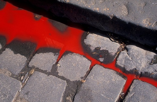 Stock Photo: 1566-578227 Blood flowing in the gutter