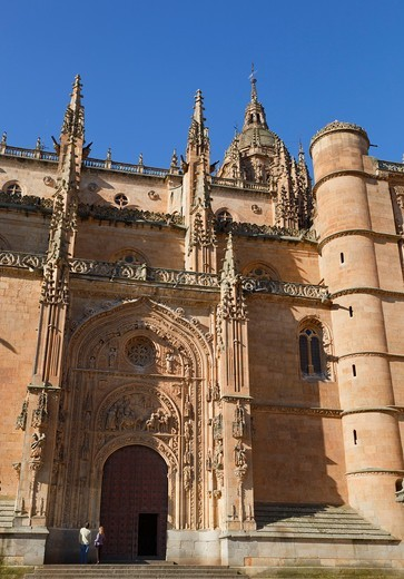 Stock Photo: 1566-579653 Salamanca, Salamanca Province, Spain  Cathedral door, northern side  Puerta de Ramos or de las Palmas  Door of the Branches or of the Palms