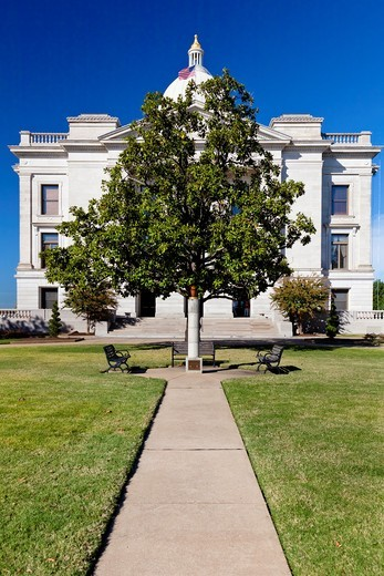 A lone tree and the Eternal Flame of Freedom at the Arkansas State Capitol grounds in Little Rock, Arkansas, USA : Stock Photo