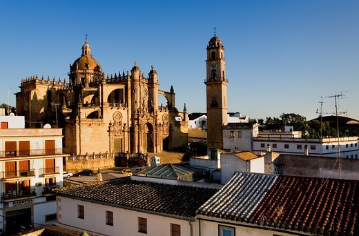 Cathedral built 17th century  Jerez de la Frontera  Cádiz province  Spain : Stock Photo