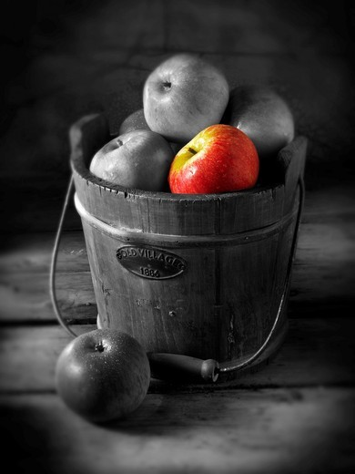 Stock Photo: 1566-583044 Fresh Discovery apple