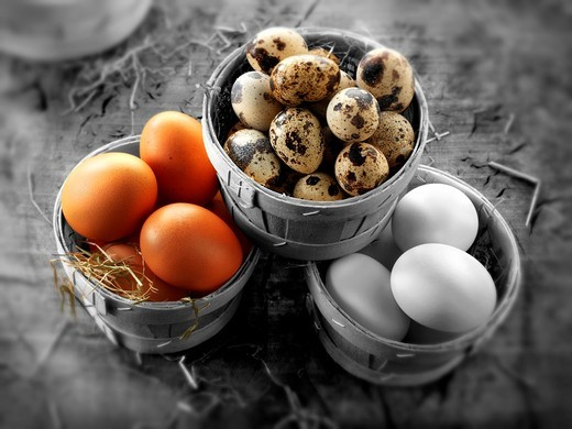 Stock Photo: 1566-583046 Quails, chicken & duck eggs