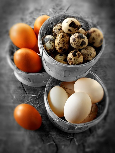 Stock Photo: 1566-584703 Punets of fresh organic Quail, duck & Chicken eggs