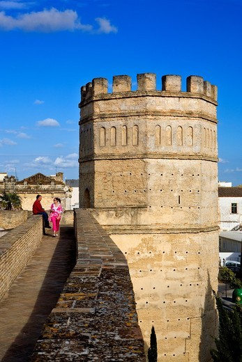 Walls of Alcazar, 12th Century, Jerez de la Frontera, Andalusia, Spain : Stock Photo