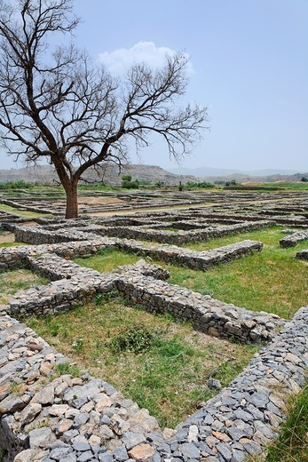 The ruins of Sirkap City, Taxila, Punjab, Pakistan : Stock Photo