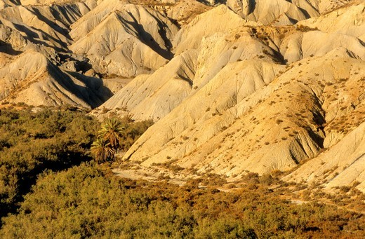 Stock Photo: 1566-588417 Desert of Tabernas, the only real desert of Europe Dry riverbed Almeria province, Andalucia, Spain