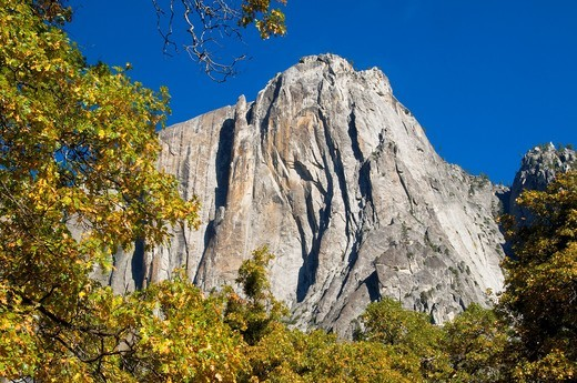 Valley cliffs, Yosemite National Park, CA : Stock Photo