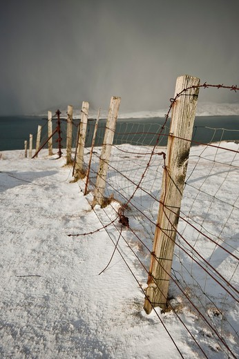 Rusty barb wire fence through snowy landscape, Isle of Harris, Outer Hebrides, Scotland : Stock Photo