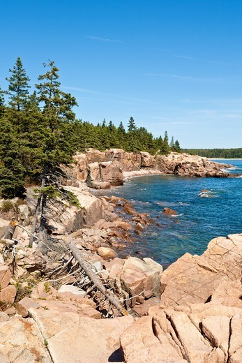 Rocky coastline at Thunder Hole in Acadia National Park near Bar Harbor, Maine : Stock Photo