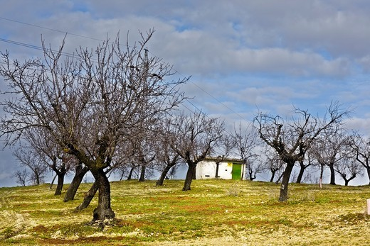 Stock Photo: 1566-594070 The transformer small house in the fields of Pinto Madrid Spain
