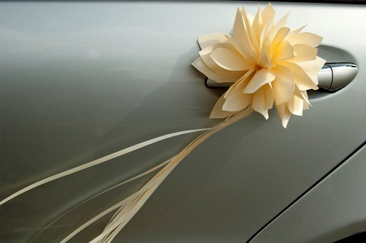 Stock Photo: 1566-594109 Door decoration wedding car