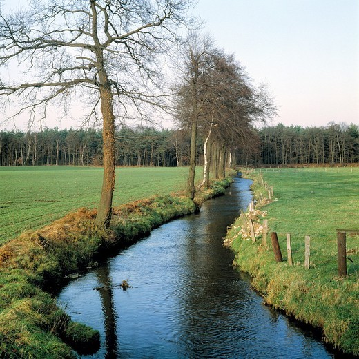 Stock Photo: 1566-594775 Germany, Dorsten, Lippe, Ruhr area, nature reserve Hohe Mark, Muensterland, Westphalia, North Rhine-Westphalia, NRW, D-Dorsten-Wulfen, river landscape, brook, agrarian country, meadow landscape, pasture land, trees, wintry