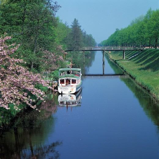 Germany, Wiesmoor, East Frisia, Eastern Frisia, Lower Saxony, river landscape, canal, Nordgeorgsfehn Canal, excursion ship Moornixe, spring blossom, footbridge, wooden bridge : Stock Photo