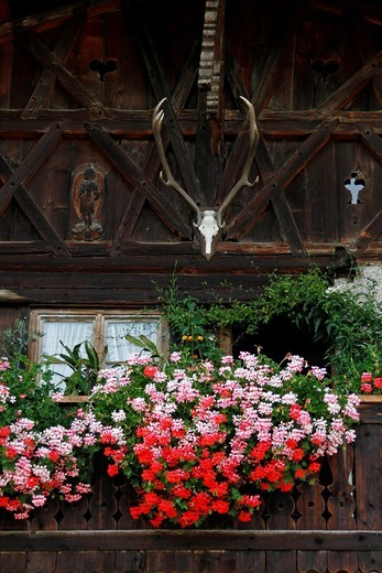 Germany Bavaria Garmisch-Partenkirchen Fruhling Strasse decorated bavarian buildings with balconies and flowers architecture : Stock Photo