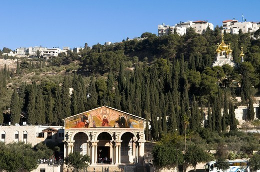 Stock Photo: 1566-596477 A view of mount Olives in East Jerusalem. The church of all nations and the Russian church Maria Magdalen closer to the top.
