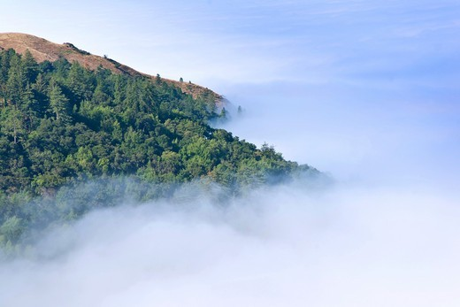 Stock Photo: 1566-601144 Morning fog obscures the coast of Big Sur California