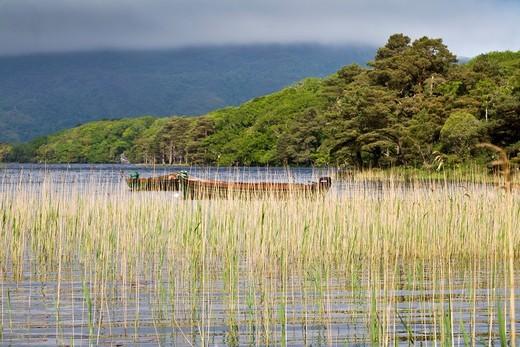 Stock Photo: 1566-601683 Muckross Lake and Boats, County Kerry, Ireland, Europe