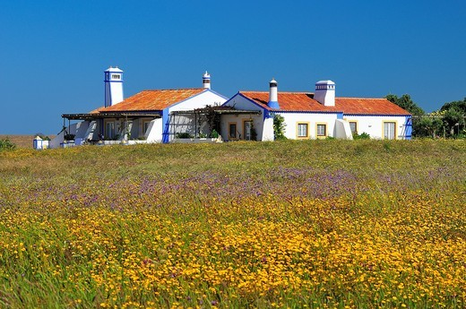 Rural house. Alentejo. Portugal : Stock Photo
