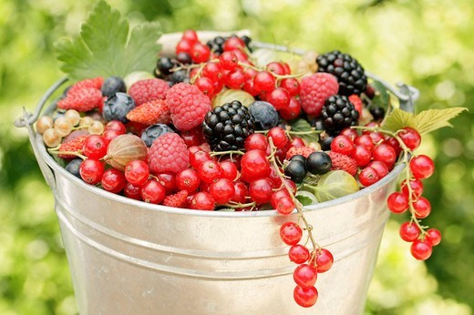 Bucket of berries : Stock Photo