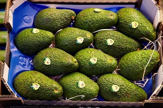 Avocados, Mercabilbao fruits and vegetables wholesale market, Basauri, Bilbao, Bizkaia, Euskadi, Spain : Stock Photo